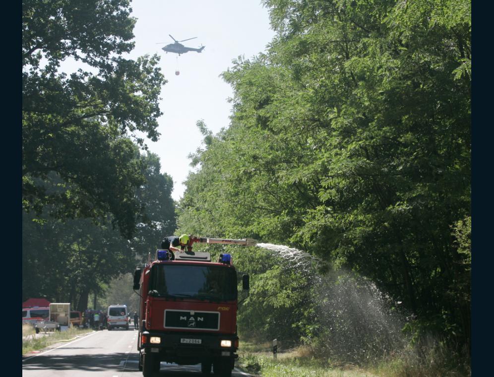 Waldbrand19Wiesen77