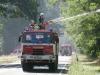 Waldbrand zwischen Wiesenau und Ziltendorf - Der Tag danach