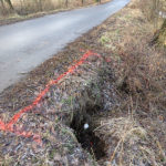 Nicht alles kann man dem Biber anlasten. Die größten Schäden beruhen auf Bodenerosion.