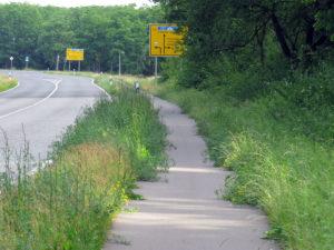 Für einen Radfahrer reicht es noch aus. Zugewachsener Radweg gegenüber vom Fußbodenstudio.