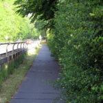 Treffen zwei Radfahrer an dieser Stelle zusammen, so bietet die Hecke an der Kleingartenkolonie Einem davon engen Naturkontakt.